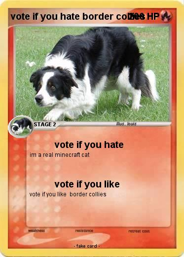 Pokemon vote if you hate border collies