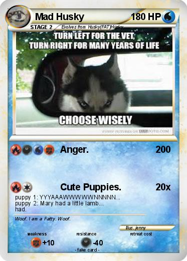 Pokemon Mad Husky