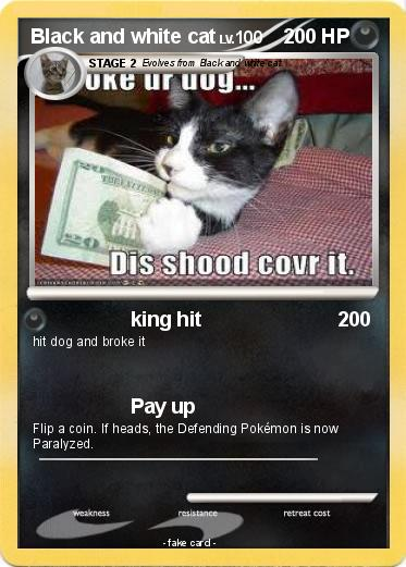 Pokemon Black and white cat