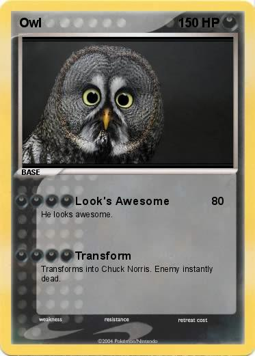 Pokemon Owl
