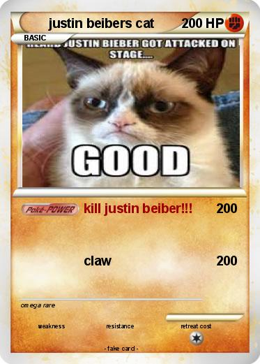 Pokemon justin beibers cat