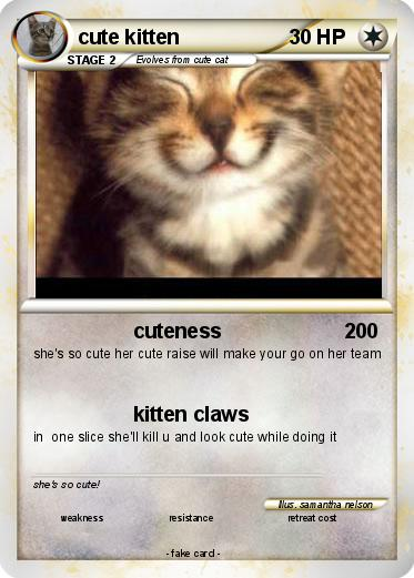 Pokemon cute kitten