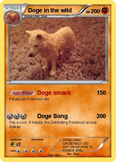 Pokemon Doge in the wild