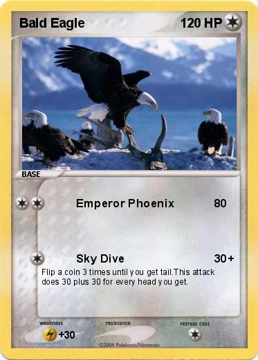 Pokemon Bald Eagle