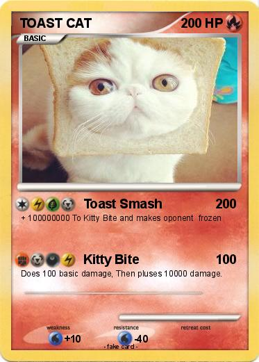 Pokemon TOAST CAT