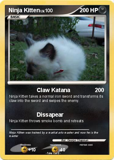 Pokemon Ninja Kitten