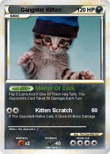 Pokemon Gangster Kitten