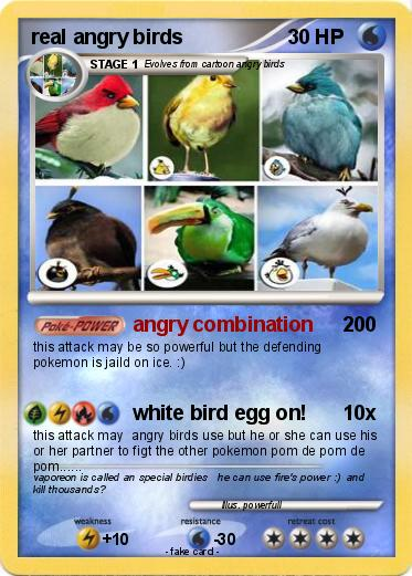Pokemon real angry birds