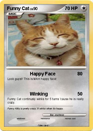 Pokemon Funny Cat