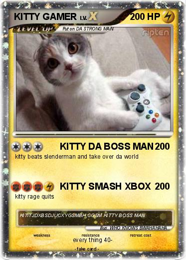 Pokemon KITTY GAMER