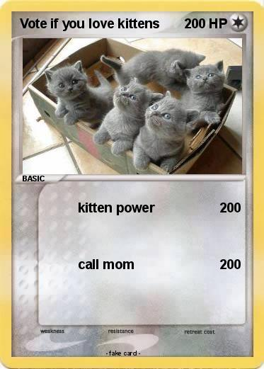 Pokemon Vote if you love kittens