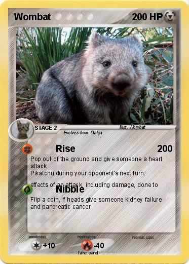 Pokemon Wombat