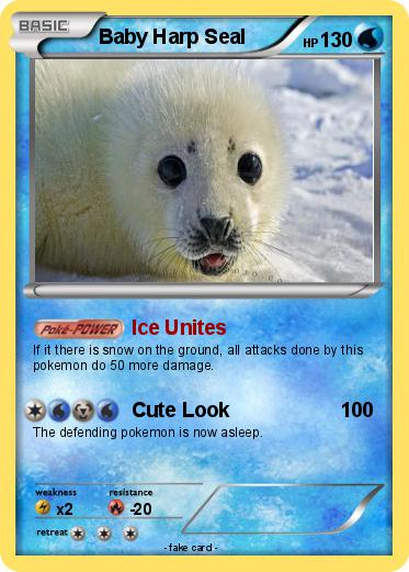Pokemon Baby Harp Seal