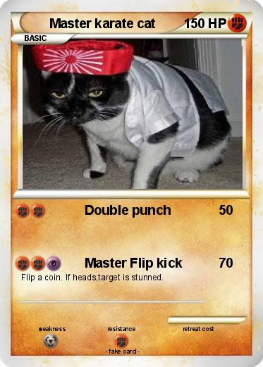 Pokemon Master karate cat