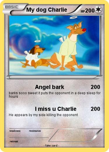 Pokemon My dog Charlie