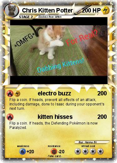 Pokemon Chris Kitten Potter
