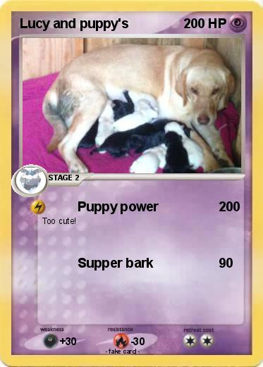 Pokemon Lucy and puppy's