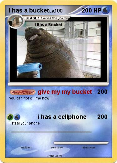 Pokemon i has a bucket