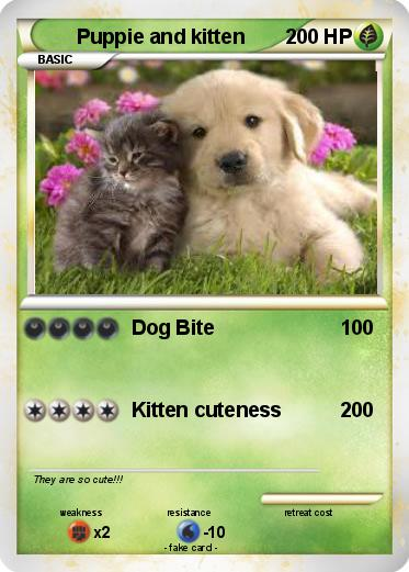 Pokemon Puppie and kitten