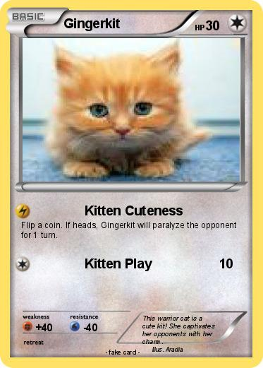 Pokemon Gingerkit
