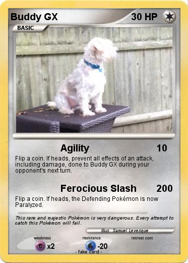 Pokemon Buddy GX