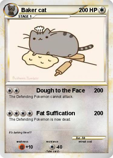 Pokemon Baker cat