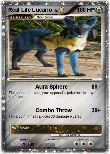 Pokemon Real Life Lucario