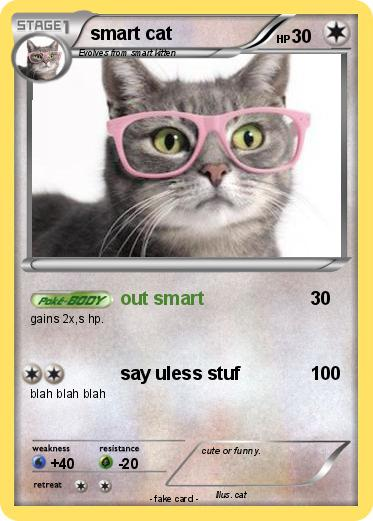 Pokemon smart cat