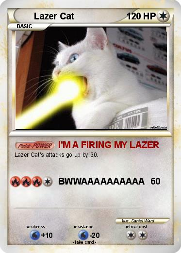Pokemon Lazer Cat