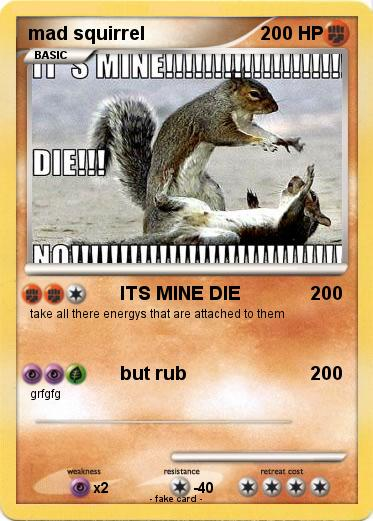 Pokemon mad squirrel