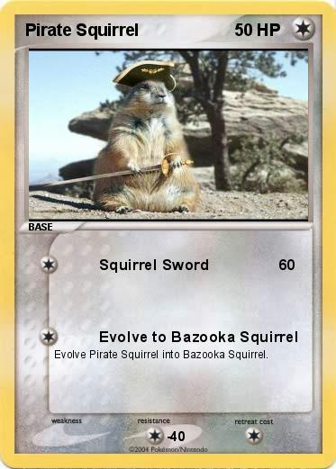 Pokemon Pirate Squirrel