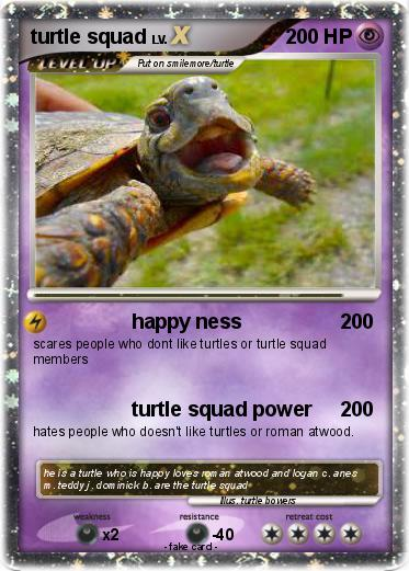 Pokemon turtle squad
