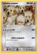 nonstop puppies