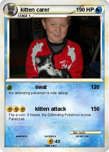 Pokemon kitten carer