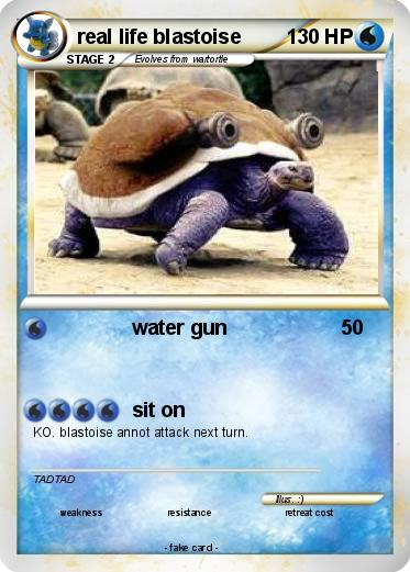 Pokemon real life blastoise