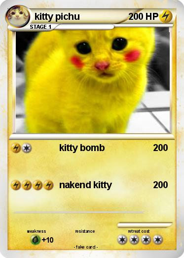 Pokemon kitty pichu