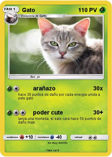 Pokemon Gato
