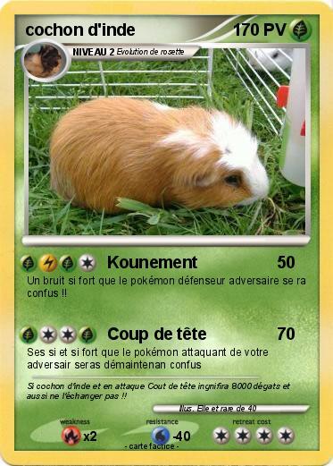 Pok mon cochon d inde 21 21 kounement ma carte pok mon - Cochon pokemon ...