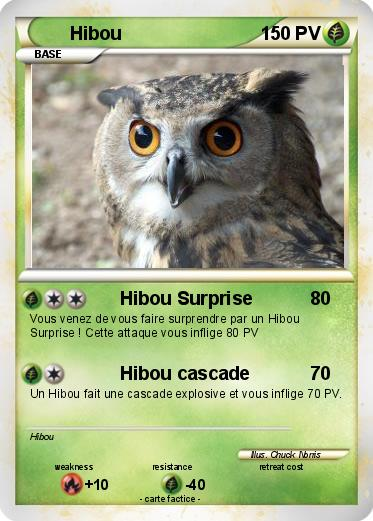 Pokemon Hibou 1