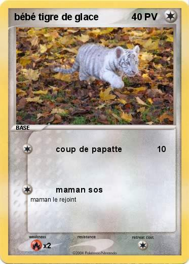 Pok mon bebe tigre de glace coup de papatte ma carte pok mon - Photo de tigre a imprimer ...
