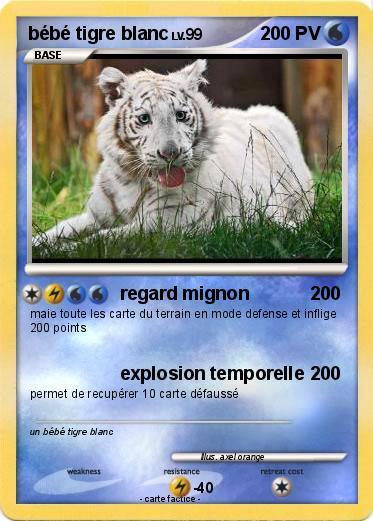 Pok mon bebe tigre blanc 9 9 regard mignon ma carte pok mon - Photo de tigre blanc a imprimer ...