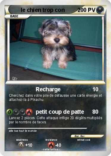pok mon le chien trop con recharge ma carte pok mon. Black Bedroom Furniture Sets. Home Design Ideas