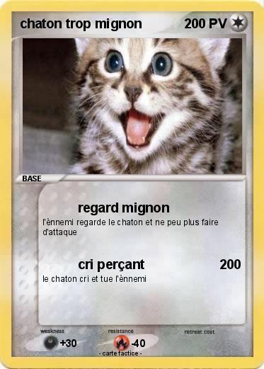 Pok mon chaton trop mignon 19 19 regard mignon ma carte pok mon - Image de chaton trop mimi ...