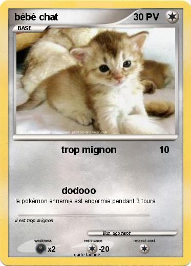 Pok mon bebe chat 23 23 trop mignon ma carte pok mon - Photo de bebe chat ...