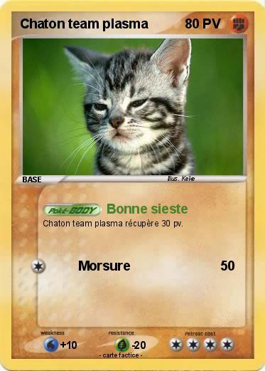 Pok mon chaton team plasma bonne sieste ma carte pok mon - Carte pokemon team plasma ...