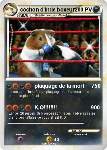Pok mon cochon d inde boxeur plaquage de la mort 750 - Cochon pokemon ...