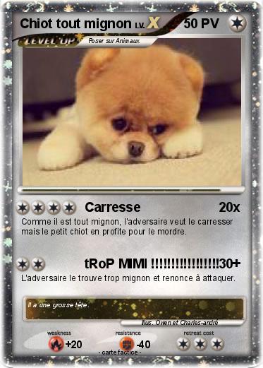 Pok mon chiot tout mignon carresse ma carte pok mon - Photo de chiot a imprimer ...