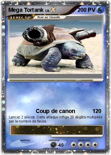 Pokemon Mega Tortank 38