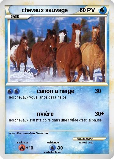 Pok mon chevaux sauvage canon a neige ma carte pok mon - Dessin de chevaux sauvage ...