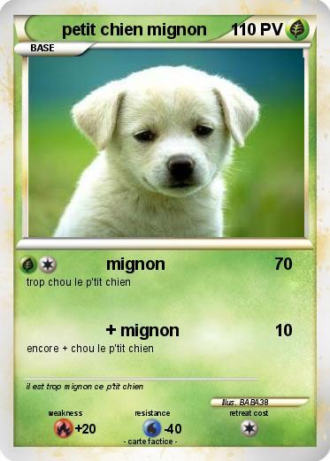 Pokemon Petit Chien Mignon